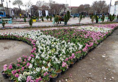 تبریز با گلهای زیبا به استقبال بهار میرود