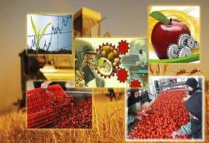 رشد ۳۰ درصدی واحدهای صنایع تبدیلی و غذایی آذربایجان شرقی در سال ۹۸