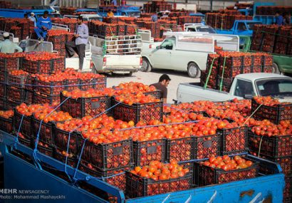 طرح «یاوران تولید» در بخش کشاورزی آذربایجان شرقی اجرا میشود
