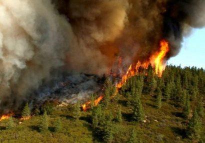 وقوع ۶۰ مورد آتشسوزی در جنگلها و مراتع آذربایجانشرقی