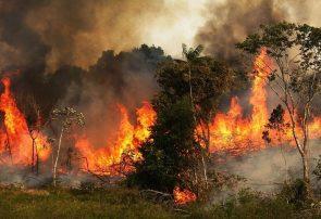 هشدار محیط زیست آذربایجانشرقی درباره آتشسوزی جنگلها
