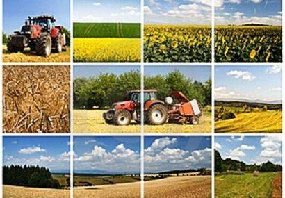 افتتاح یک هزار و ۵۳۴ میلیارد ریال طرح کشاورزی در آذربایجانشرقی