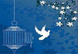 آزادی ۳۱۰ زندانی غیرعمد با کمک خانوادههای متوفی در آذربایجانشرقی