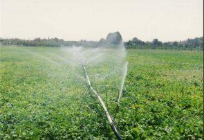 کاهش ۴۰درصدی آب مصرفی بخش کشاورزی حوضه دریاچه ارومیه