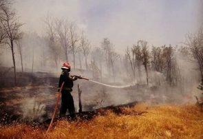 اطفا کامل آتشسوزی در جنگلهای ارسباران