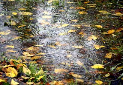 میانگین بارش در آذربایجانشرقی به ۳۰۲ میلی متر رسید