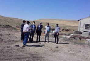 تاکید دادستان هشترود بر رعایت مسایل بهداشتی در دامداری ها