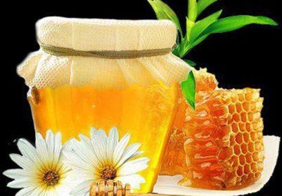 آذربایجانشرقی سالانه ۱۵ هزار تن عسل تولید میکند