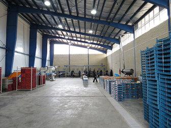 افزایش یک میلیون تنی توان سردخانهای آذربایجان شرقی با احداث ۲۰۰ سردخانه جدید