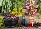 شناسایی ۴۵۰ گونه گیاهان دارویی در آذربایجانشرقی