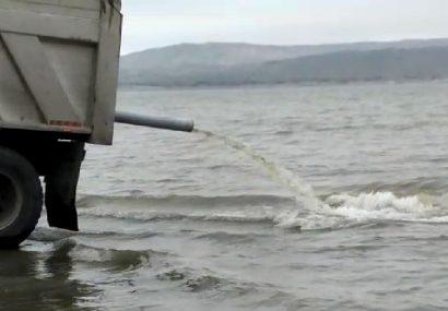 ۲۵۰ هزار قطعه بچه ماهی در سد خداآفرین رهاسازی شد