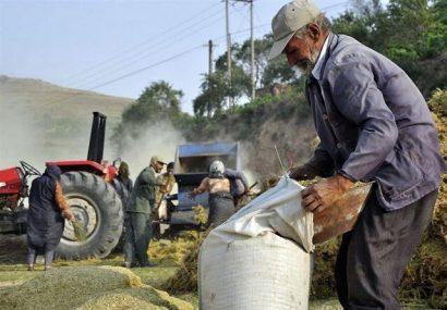 افزایش ۵۳ درصدی دریافتی مستمری بگیران صندوق بیمه اجتماعی روستاییان در آذربایجان شرقی