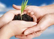 افزایش میزان بیمه محصولات کشاورزی در آذربایجان شرقی