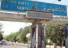 درخشش دانشگاه تبریز در نظام رتبه بندی تاثیر تایمز ۲۰۲۱ بر اساس اهداف توسعه پایدار ملل متحد