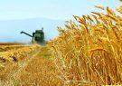 بخش کشاورزی در فرآیند رشد و توسعه کشور وظایفی مهم برعهده دارد