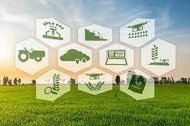 چرایی امکانپذیر شدن اقتصادی پایدار با توسعه کشاورزی پایدار