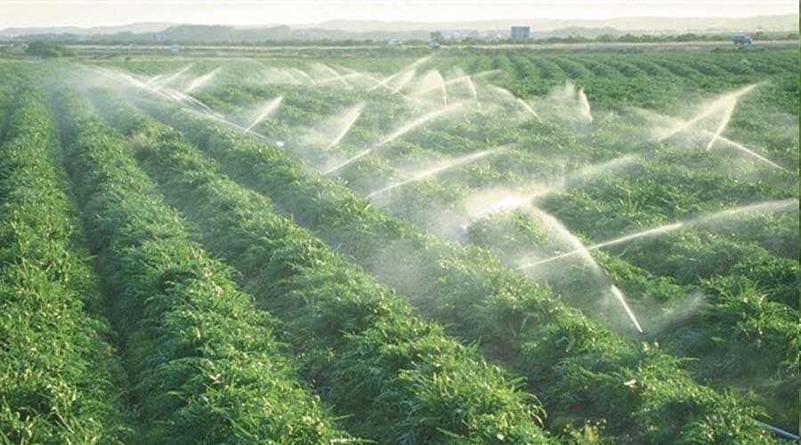 آبیاری و زهکشی بیش از ۱۲ هزار هکتار از اراضی کشاورزی آذربایجانشرقی