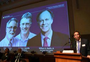 برندگان نوبل پزشکی ۲۰۱۹ مشخص شدند