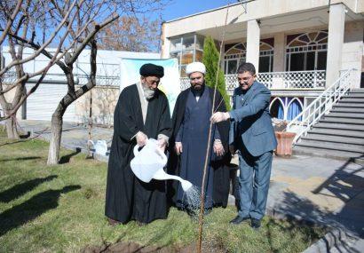 درختکاری از کارهای ارزشمند برای حفظ محیط زیست است