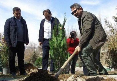 طرح کاشت یک میلیون نهال برای سال ۹۹ در تبریز کلید خورد