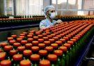 نقش صنایع تبدیلی در اشتغال و افزایش صادرات غیرنفتی