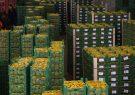 جلوگیری از صادرات فلّهای و کسب افتخار تولید محصولات